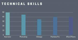 vaardigheden cv grafiek